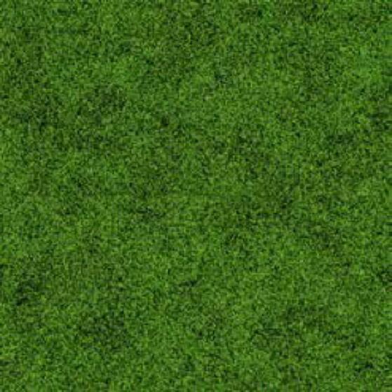 Standard-Designs in Optiken in Rasen grün
