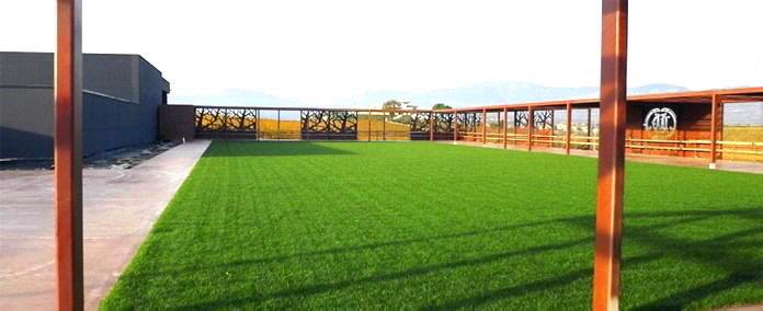 Im Zuge der Erweiterung des Weinguts Marramiero entstand ein 2600 m² großer Dachgarten mit breiten  gepflasterten Wegen. Es wird als Veranstaltungsort für Veranstaltungen genutzt.