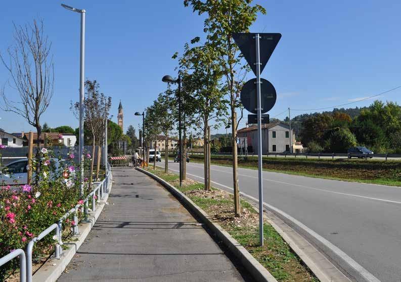 Unterirdische Wurzelbildung der Bäume ohne zerstörte Straßen und Gehwege mit NEW ELEVETOR TANK